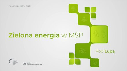 """Polskie MŚP teoretycznie są eko. W praktyce do zielonych inwestycji z rezerwą podchodzi aż 83 proc. firm Prezentacja wyników raportu EFL """"Zielona energia w MŚP. Pod lupą"""""""