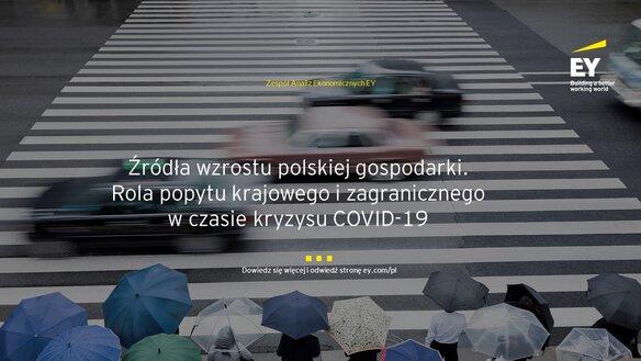 Źródła wzrostu polskiej gospodarki. Rola popytu krajowego i zagranicznego w czasie kryzysu COVID-19